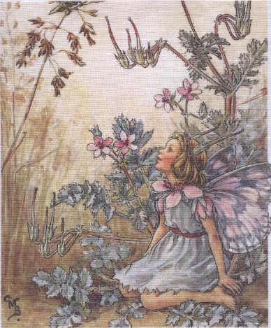 Creative Embroidery By Di Van Niekerk